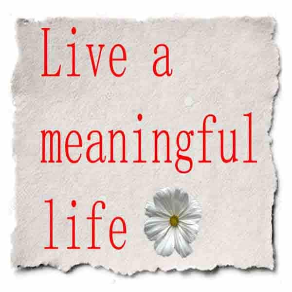 make your life meaningful and valuable