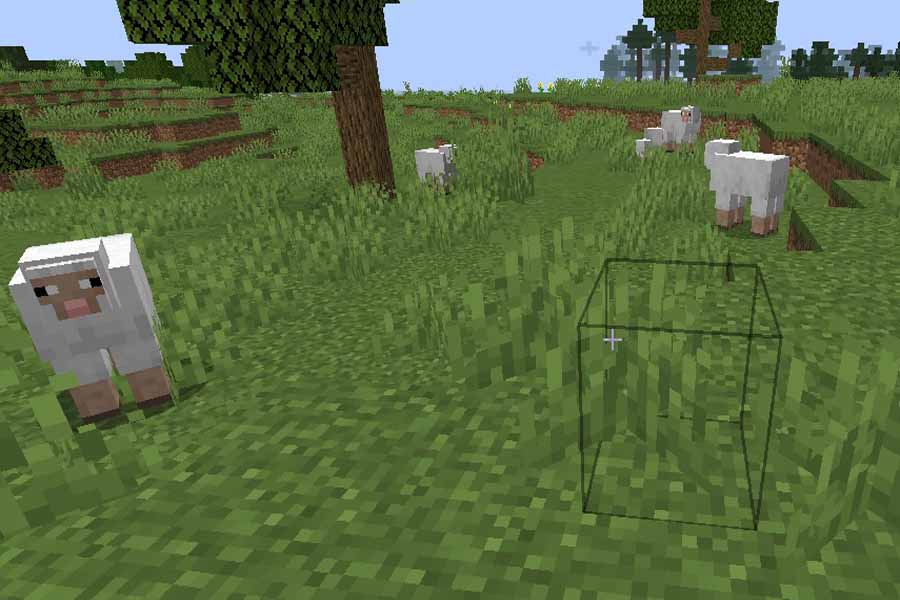Photo of sheep in the minecraft. The sheep are everywhere and by killing them you will get wool that is useful for making bed in Minecraft.