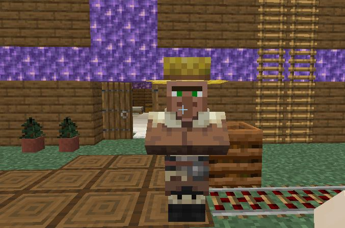 Photo of a farmer villager in Minecraft